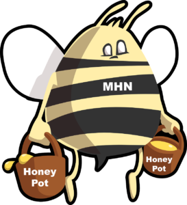 modern honey network